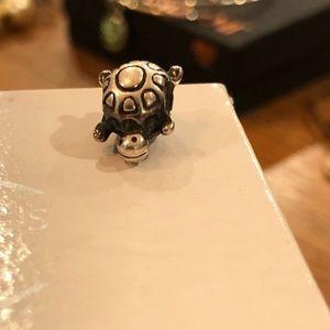 Pandora Jewelry - Pandora Turtle Charm